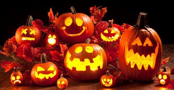 - Halloween 2014 -